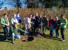 Planting new trees at the Community Orchard