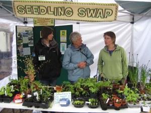 early seedling swap