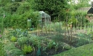 garden share 2