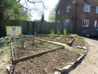 Vicarage plot, early 2015