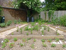 Vicarage plot June 2015 013