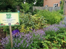 July in the Vicarage plot
