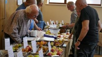 Sparsholt College Apple display, ALFI Harvest Feast, 2017